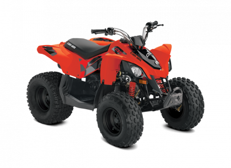 Can-Am DS 90 2019