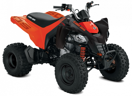 Can-Am DS 250 2021